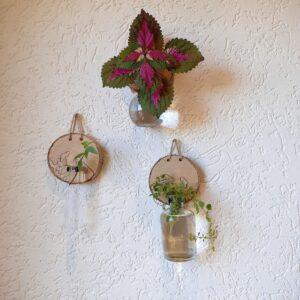 wandvaas; wanddecoratie woonkamer, stekjes houder